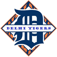 Logo for Delhi Minor Baseball